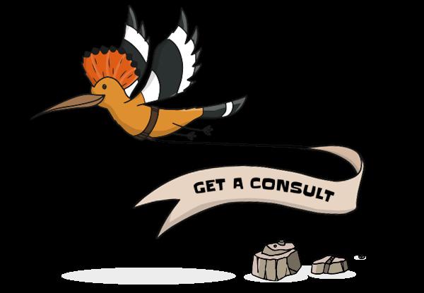 marketing consultations